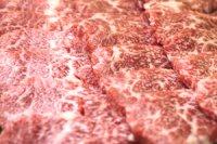 山形牛黒毛和牛 特選霜降りカルビ 焼肉用 500g
