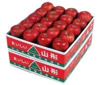 山形県朝日町産 ふじりんご 10kg 秀品40玉入