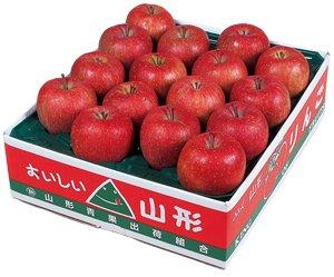 画像1: 山形県朝日町産 ふじりんご 5kg 秀品16玉入